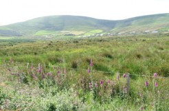 O.5 acre site for sale at Lower Sussa, Emlaghmore, Ballinskelligs.