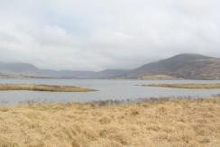 Lough Currane Land for Sale