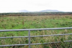 Circa 1.5 acre –   SITE FOR SALE AT EMLAGHNAMUCK