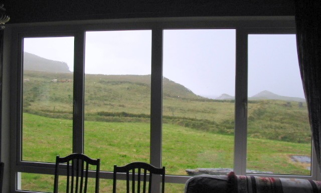 view from dining room (2)