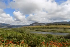 FOR SALE ~ Foxhaven, Waterville, Co Kerry