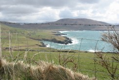 Circa 65 Acres of  good quality agricultural land at the most south westerly point of Finians Bay Peninsula.
